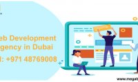 Looking for fantastic web development service in Dubai, Connect with us