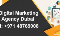 Get genuine business leads through outstanding digital marketing services
