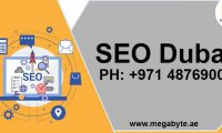 The role of SEO services in Dubai Businesses