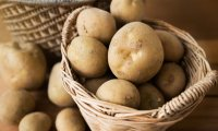 The Best Side of growing potatoes indoors